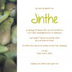 Jinthe