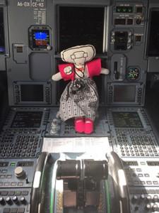AAgje 5in cockpit Inge