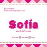 Sofia binnenkant
