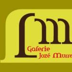 Visitekaartje Jozé Murre