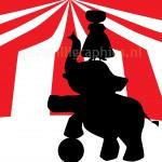 'Circus' Tent